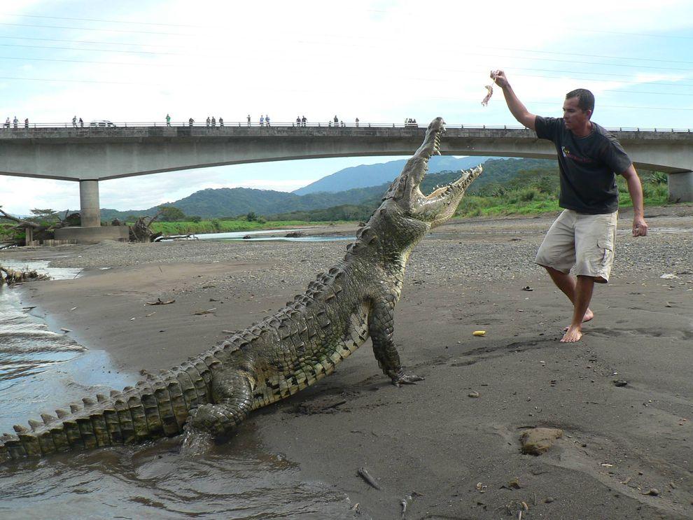 Timsah Nehrinde Ölüm Turu