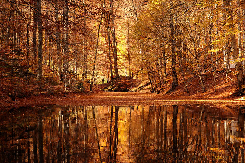 Yedigöller'de Sonbahar Güzelliği