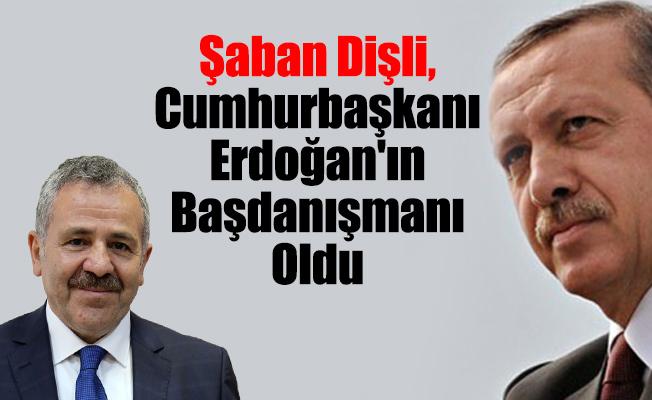 Dişli, Cumhurbaşkanı Erdoğan'ın Başdanışmanı Oldu