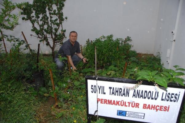 Kadıköy'de Okul Bahçelerinde Hasat
