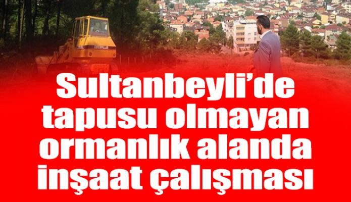 Sultanbeyli'de tapusu olmayan ormanlık alanda inşaat çalışması
