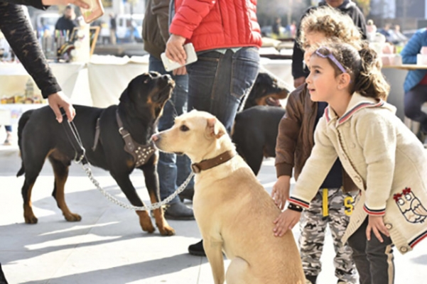 """""""İyi ki Üsküdar Var!"""" markası sokak hayvanları için festival düzenledi"""
