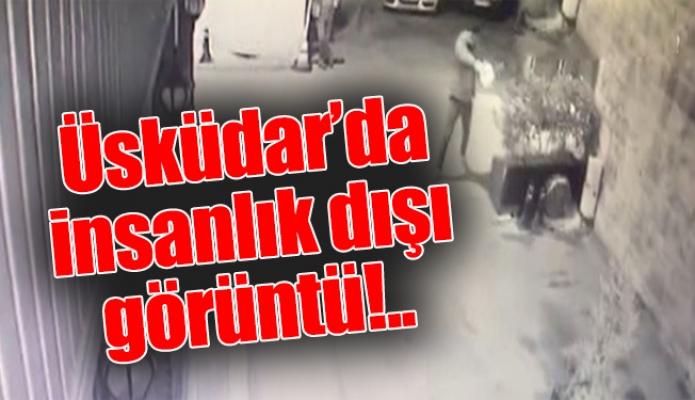 Üsküdar'da insanlık dışı görüntü!..