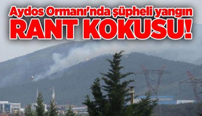 Aydos Ormanı'nda şüpheli yangın.Rant kokusu!