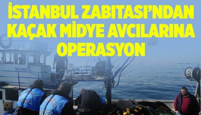İSTANBUL ZABITASI'NDAN KAÇAK MİDYE AVCILARINA OPERASYON