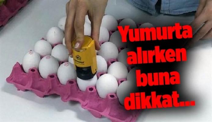 Yumurta alırken buna dikkat…