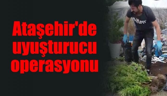 Ataşehir'de uyuşturucu operasyonu
