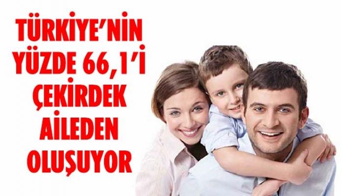 TÜRKİYE'NİN YÜZDE 66,1'İ ÇEKİRDEK AİLEDEN OLUŞUYOR