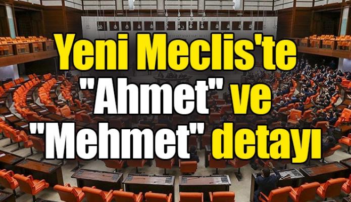 Yeni Meclis'te ''Ahmet'' ve ''Mehmet'' detayı