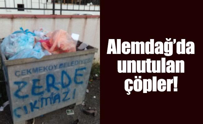 Alemdağ'da unutulan çöpler!