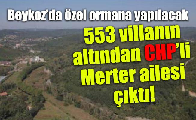 Beykoz'da özel ormana yapılacak 553 villanınaltından CHP'li Merter ailesi çıktı!