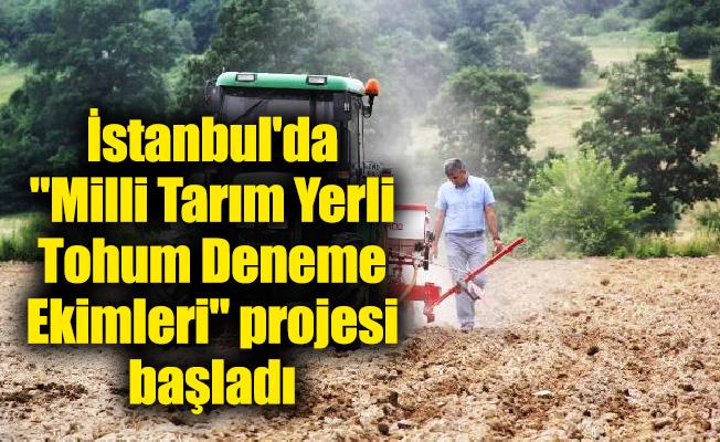 """İstanbul'da """"Milli Tarım Yerli Tohum Deneme Ekimleri"""" projesi başladı"""