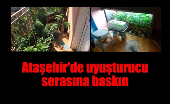 Ataşehir'de uyuşturucu serasına baskın
