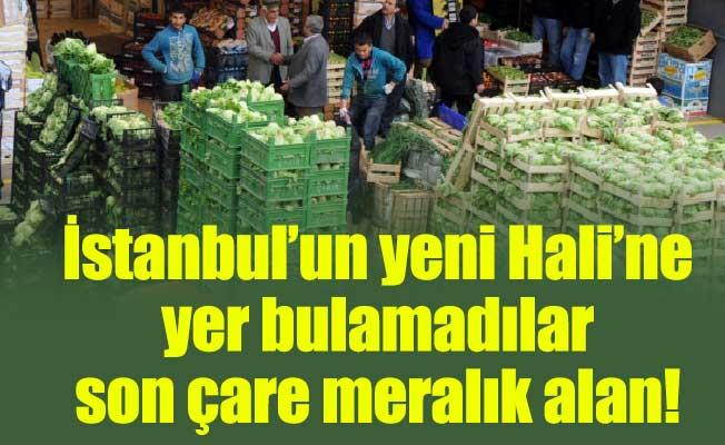 İstanbul'un yeni Hali'ne yer bulamadılar son çare meralık alan!