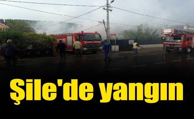 Şile'de yangın