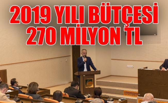 2019 YILI BÜTÇESİ 270 MİLYON TL