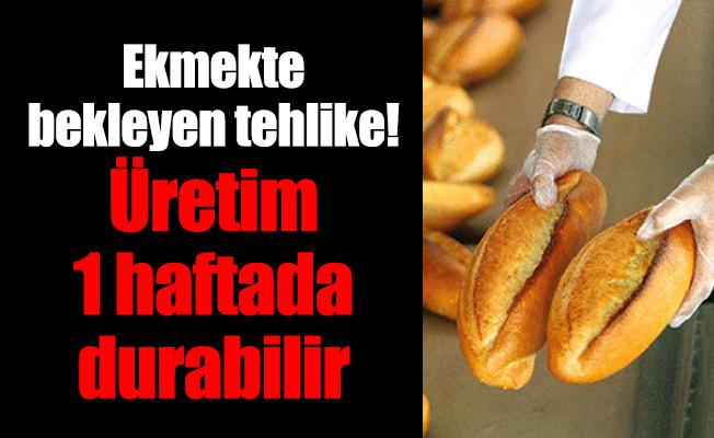 Ekmekte bekleyen tehlike!Üretim 1 haftada durabilir