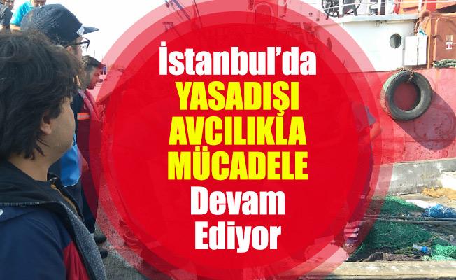 İstanbul'da Yasadışı Avcılıkla Mücadele Devam Ediyor