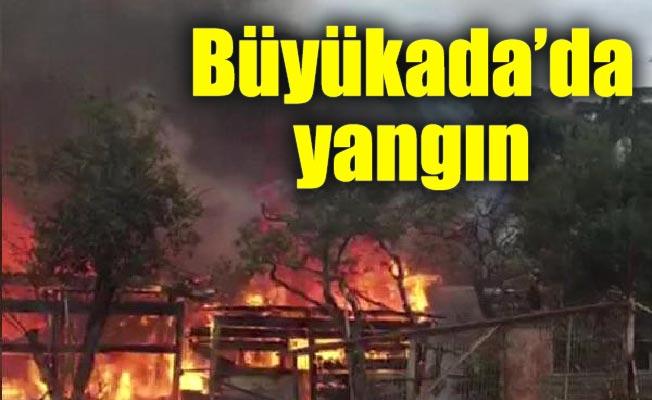 Büyükada'da yangın