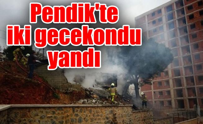 Pendik'te iki gecekondu yandı