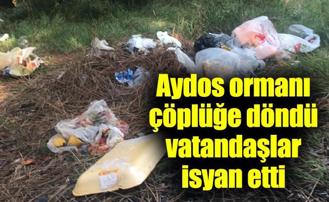 Aydos ormanı çöplüğe döndü vatandaşlar isyan etti