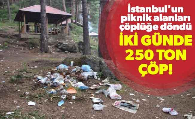 İstanbul'un piknik alanları çöplüğe döndü.İki günde 250 ton çöp!