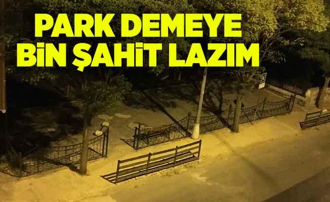 Park demeye bin şahit lazım