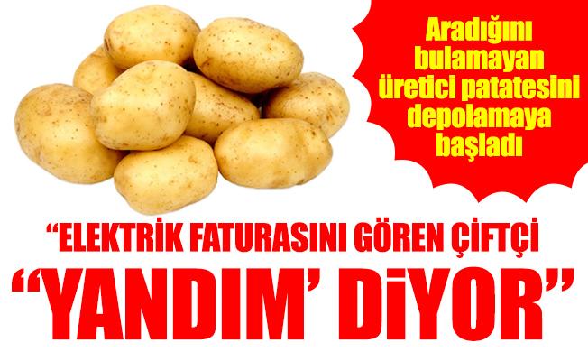 """PATATES ÜRETİCİSİ YİNE MAĞDUR"""