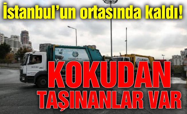 İstanbul'un ortasında kaldı! Kokudan taşınanlar var