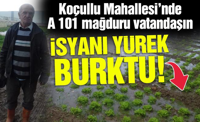 Koçullu Mahallesi'nde A 101 mağduru vatandaşın isyanı yürek burktu!