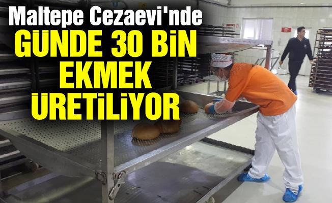 Maltepe Cezaevi'nde günde 30 bin ekmek üretiliyor