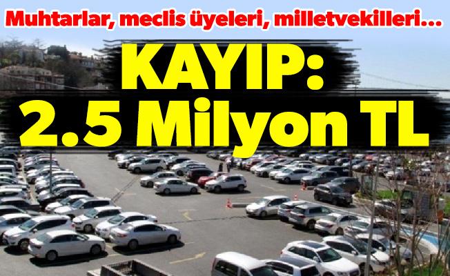 Muhtarlar, meclis üyeleri, milletvekilleri...Kayıp: 2.5 Milyon TL