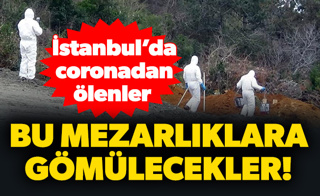 İstanbul'da coronadan ölenler bu mezarlıklara gömülecekler!