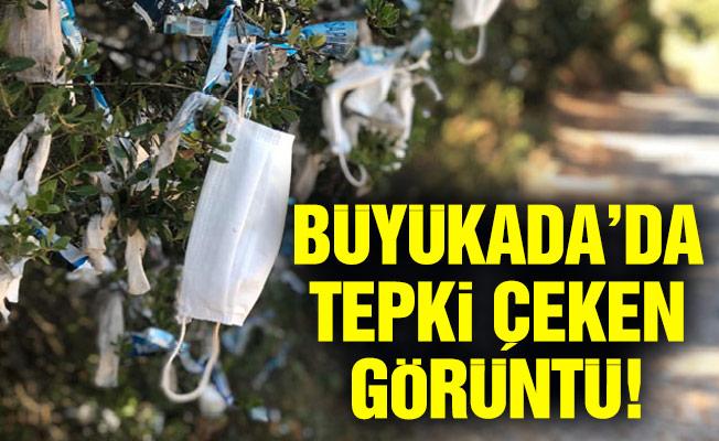 BÜYÜKADA'DA TEPKİ ÇEKEN GÖRÜNTÜ!