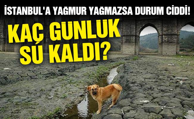 İstanbul'a yağmur yağmazsa durum ciddi!Kaç günlük su kaldı?