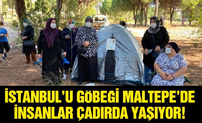 İSTANBUL'U GÖBEĞİ MALTEPE'DE İNSANLAR ÇADIRDA YAŞIYOR!