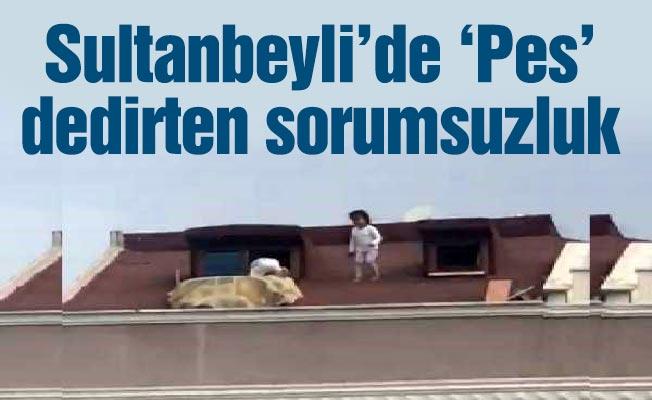 Sultanbeyli'de 'Pes' dedirten sorumsuzluk