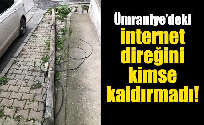 Ümraniye'deki internetdireğini kimse kaldırmadı!