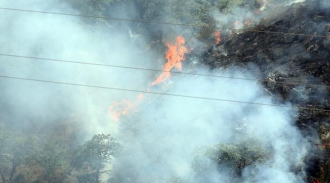 Beykoz'da Orman Yangını Kontrol Altına Alındı