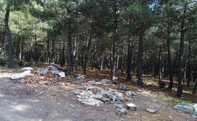 Aydos Ormanı, doğa terörü nedeni ile yok oluyor