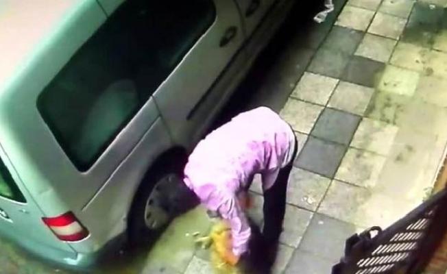 Köpeğe şiddet uygulayan kişi gözaltına alındı