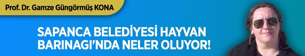 SAPANCA BELEDİYESİ HAYVAN BARINAGI'NDA NELER OLUYOR!