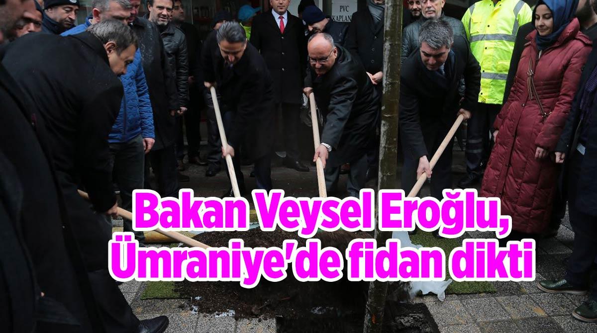 Bakan Veysel Eroğlu, Ümraniye'de fidan dikti