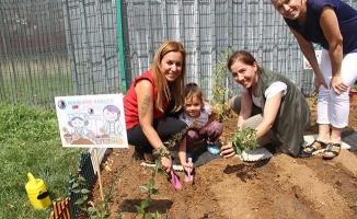 Kartal Belediyesi Kreşlerinde Hobi Bahçeleri Kuruldu