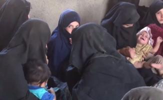 IŞİD'cilerin aileleri peşmergeye teslim oldu