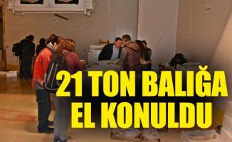 YASAL BOY SINIRI ALTINDA AVLANAN 21 TON BALIĞA EL KONULDU