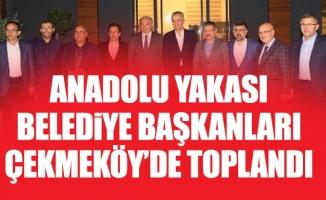 Anadolu Yakası belediye Başkanları Çekmeköy'detoplandı