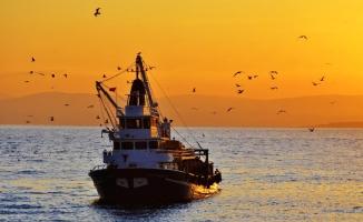Balıkçılar isyanda: Böyle balıksız dönem görülmedi