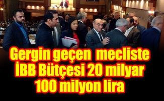 Gergin geçen meclisteİBB Bütçesi 20 milyar 100 milyon lira