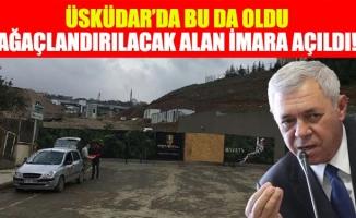 Üsküdar'da Bu Da Oldu:Ağaçlandırılacak Alan İmara Açıldı!